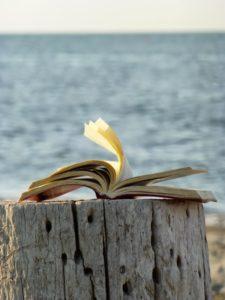 Libro al vento